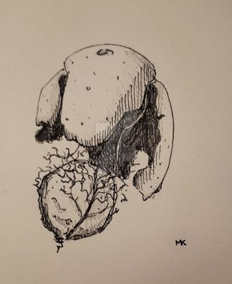 inktober 2015 day 4 - Birth of a walnut  by Sanguinik