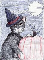 Halloween Cat by SilverPyroLupogryph