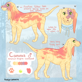 Canvas Reference by foreign-potato