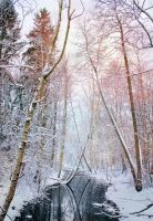 Winter River by Pajunen