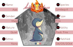 PKMNation - Axel Reference Sheet by maybarros