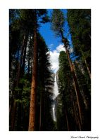 Yosemite 1 by forfie