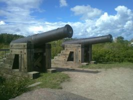 Cannons in Bomarsund by EgonEagle