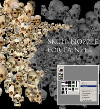 Skull Nozzle for Painter X by SATTISH