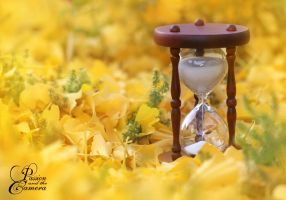 Running out of Time by PassionAndTheCamera
