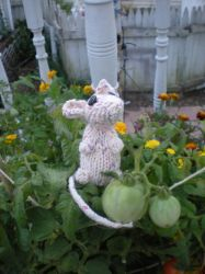 Notch... a knitted mouse by AmythestCatCreations