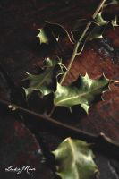 Summers End, Bring Forth The Holly by ElementaryDearWatson