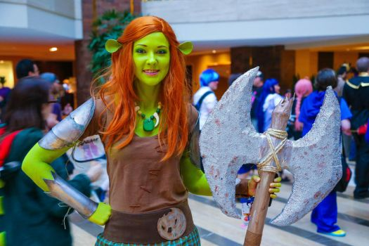 Shrek - Fiona Cosplay by OscarG1