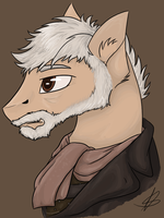 The War Doctor by GoldenNove