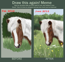 Meme  Before And After -- Brynja by steffchep