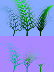 Ferns - Static view by philho