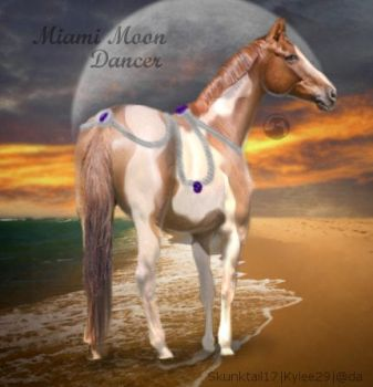 Miami tack by SeaHeartStables