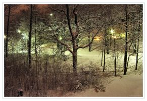 Winter Night by Pajunen