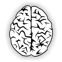 Brain vector free by ivprogrammer