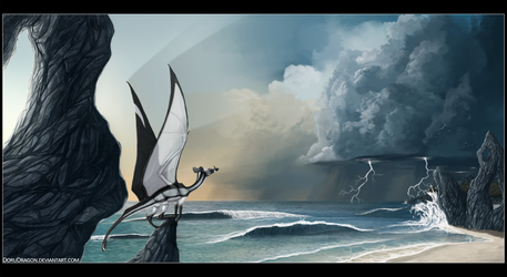 .:The incomming storm:. by DoruDrutt