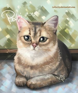 Pati the cat =^..^= by 1NFIN1TY