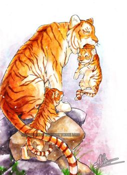 :Tiger Family: by YoukaiYume