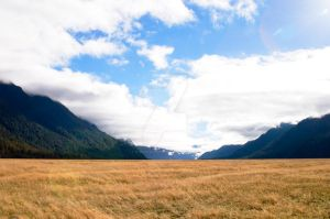 NZ- Mirror Lakes Park by EJSCreations