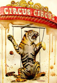 Something about how funny circuses are by agnia-solja