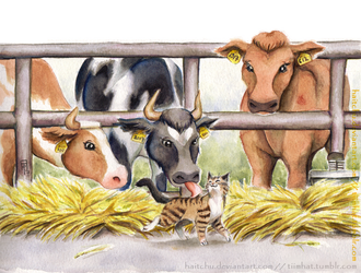 Cat and Cows by haitchu