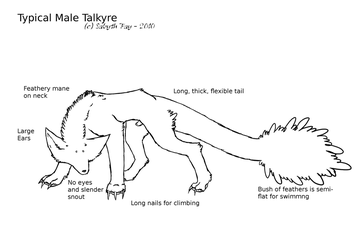 Small Talkyre Ref by painted-wolf-art