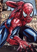 Spidey sketchcard by Csyeung