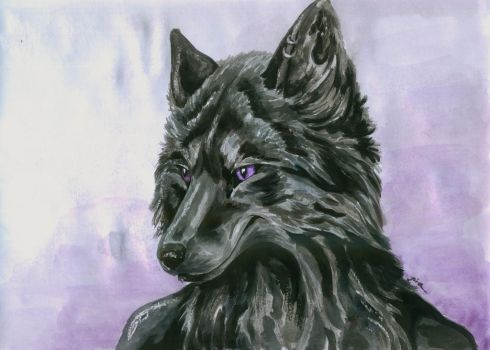 Black fox by DaphneBlake