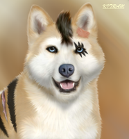 COMMISSION FOR Dalminah - Realistic Sharikaze by KITRAM