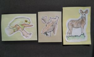 GIFTS: Summer cards with animals by TurquoiseThought