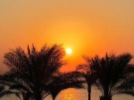 Red Sea Sunrise by RozenGT