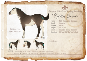 #68 Pyrates Beware by WesternSpice