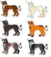 Lioness Adoptables NYP [Closed] by Sukida-Adopts
