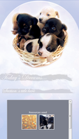 Puppies CSS by elicoronel16