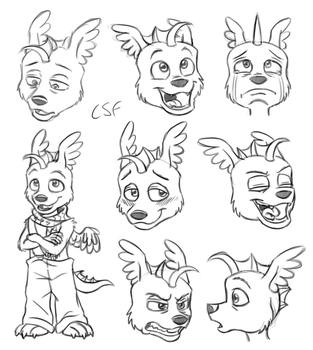 Expression Practice by CartoonSilverFox