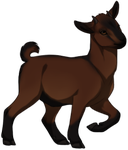 Brown Pygmy Goat by TokoTime