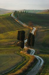 Tuscan Morning by aw-landscapes