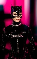 catwoman by Sean-Dabbs-fx