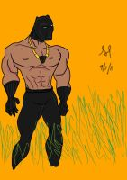 DSC black panther by isreal8nc