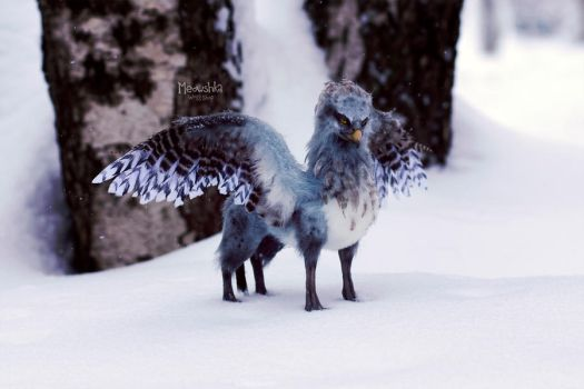 Hippogriff by miaushka-workshop