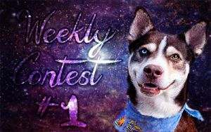 Weekly Contest 1 by BerlinlavsMarie