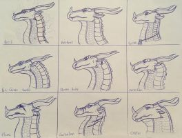 Wings of Fire: Skywing character studies by Iron-Zing