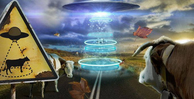 Ufo Cow S by gaia2013