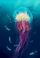 Jellyfish by pyro-helfier