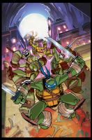 TMNT Amazing Adventures 1 Cover by Red-J