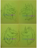 Possible Stream Alert Images by EliteUnicorns