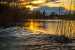 Flooded Boating Lake (2) by Mincingyoda