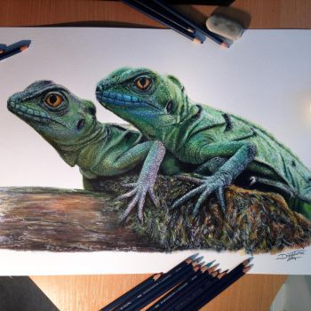 Chinese water Dragons Color Pencil Drawing by AtomiccircuS