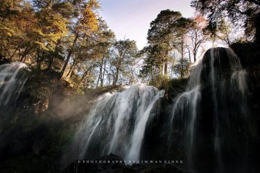 Falls In The Woods by couleur