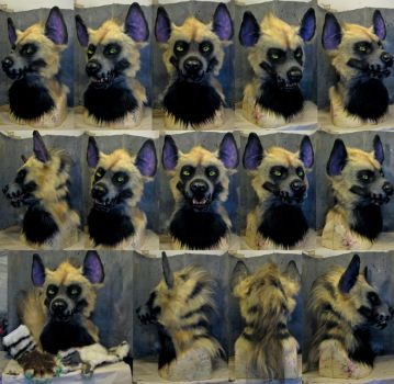 spooky striped hyena costume FOR SALE?! :D by Crystumes