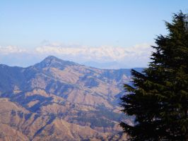 New Kufri, Shimla-India by rickydeviant